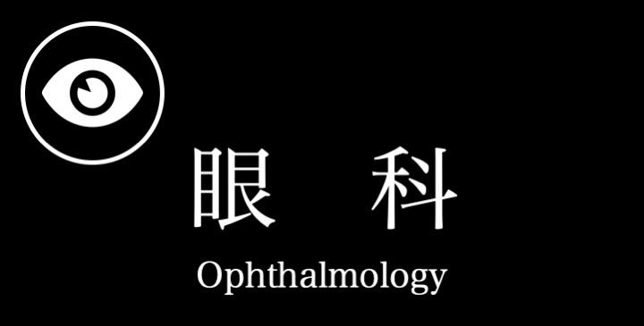 眼科特診ブログ 〜実際に受診された子たちのと眼の病気の紹介⑤〜