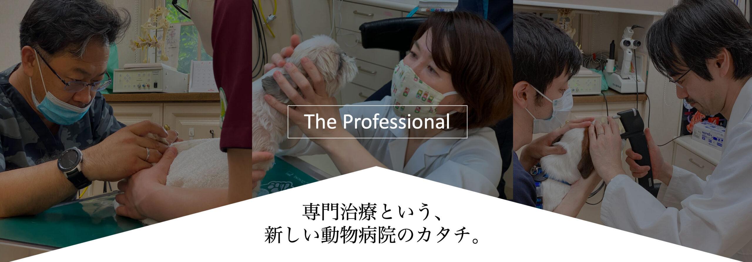 りんごの樹動物病院   愛知県安城市の動物病院です